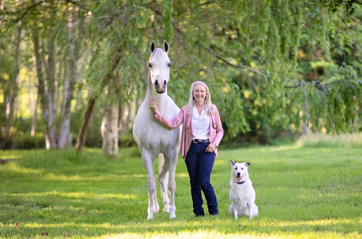 horse-liz-bailey-equestrian